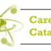 Career catalyst vs Career coach