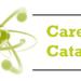 Career catalyst vs Career coach
